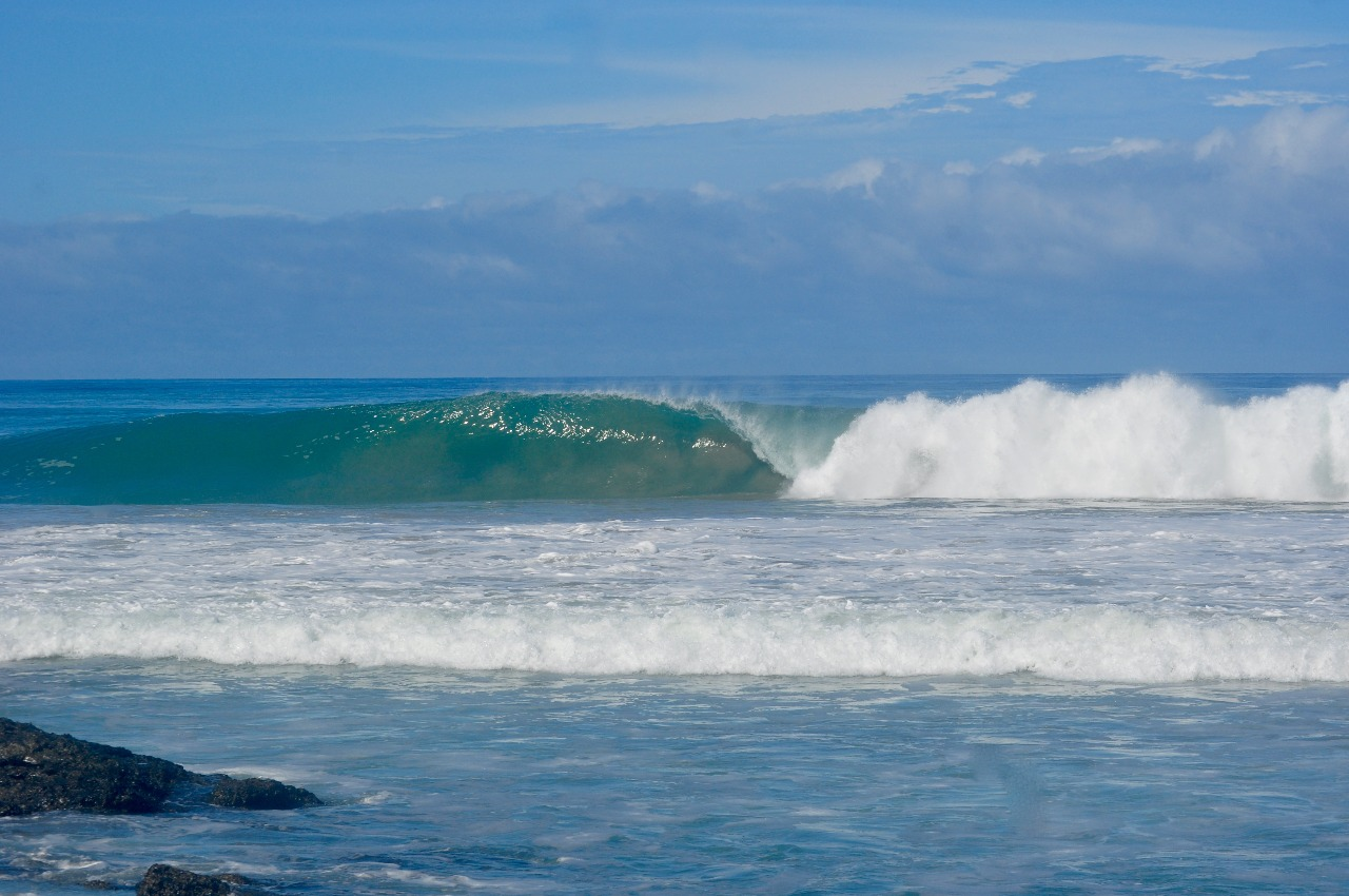 Aligned Flow® Yoga/SUP/Surf Retreat ~ Costa Rica