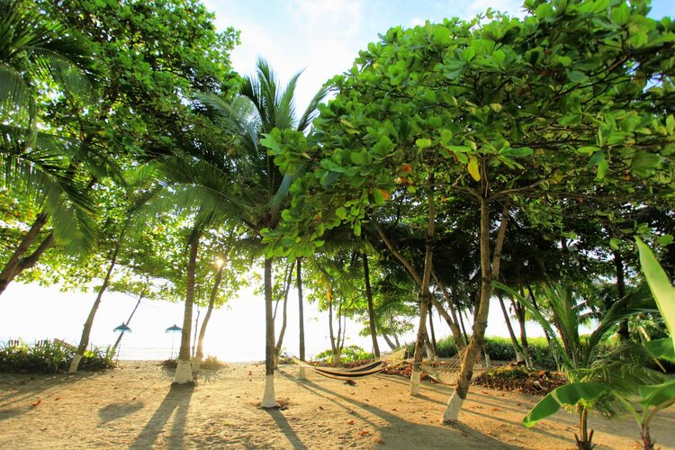 How-and-why-should-Santa Teresa-and-Costa Rica-be-the-place-to-go
